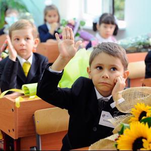 Школы Воскресенска
